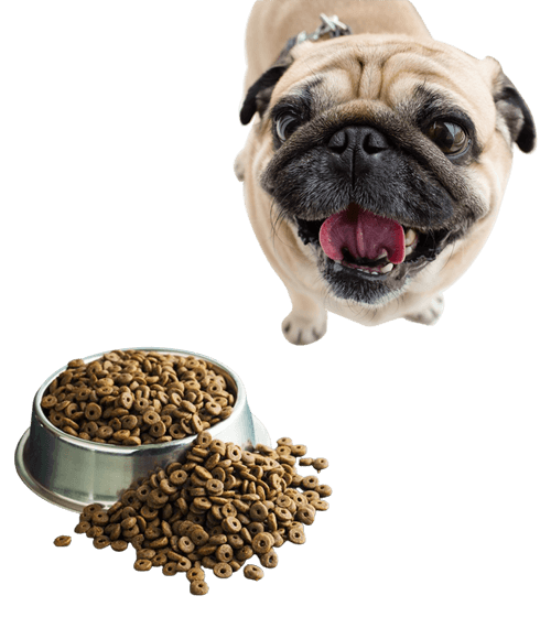 Moorishly Grain free dog food