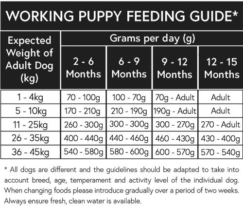 working-puppy-feeding-guide
