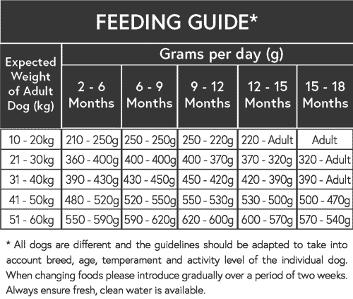 Puppy dog large breed feeding guide