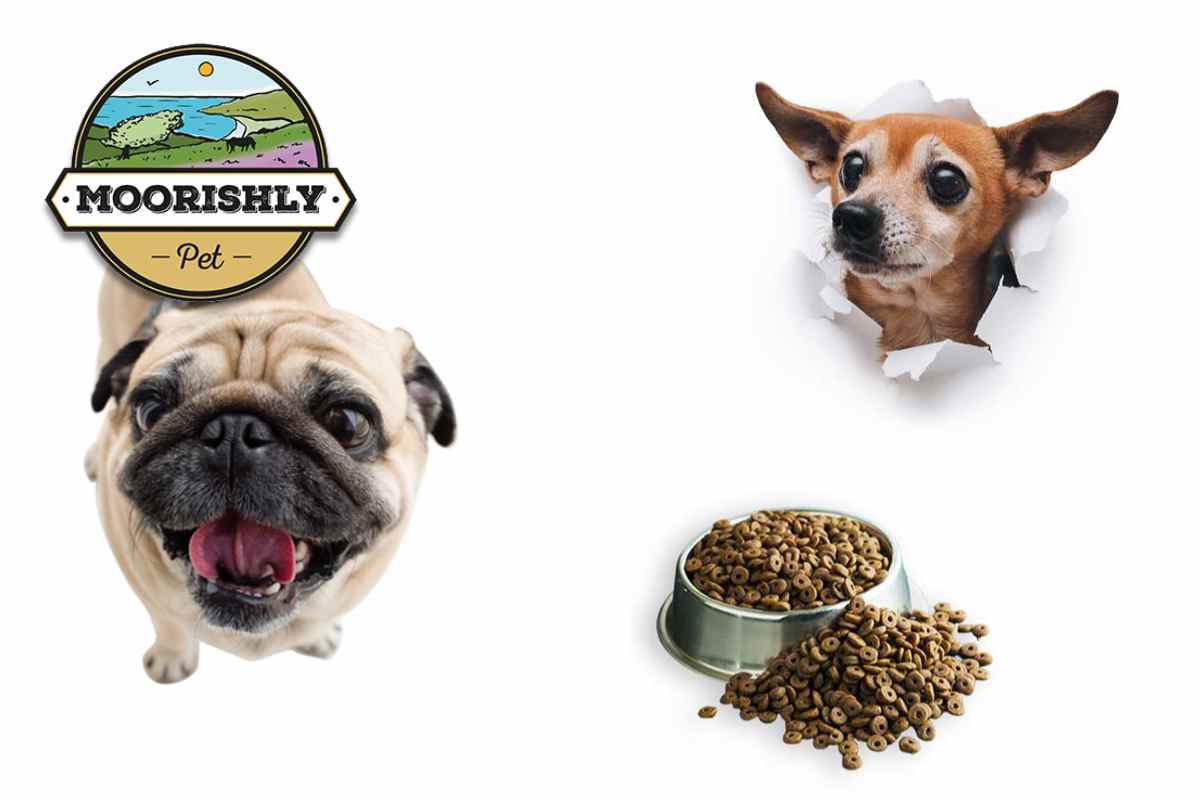 light dog food for small dogs